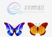 可爱蝴蝶图下载