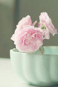 清新大花朵小米手机壁纸