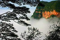 竹海自然景观图片