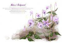 水彩花卉植物源文件素材