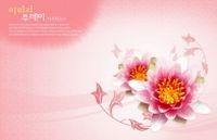 精美花卉背景源文件