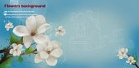 白色花卉装饰背景图源文件