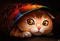 大眼睛金丝猫图片