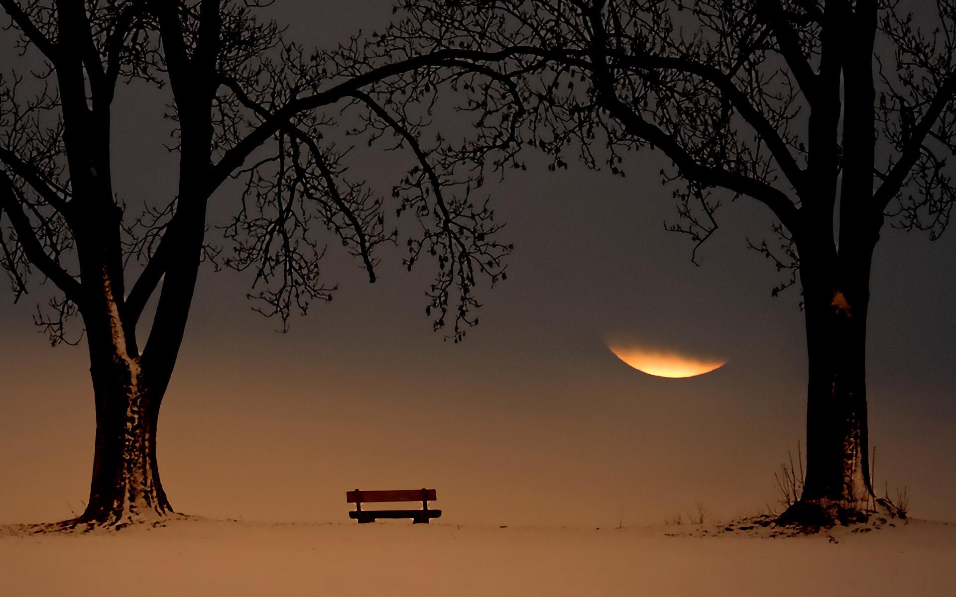 孤独的长椅唯美风景壁纸大全