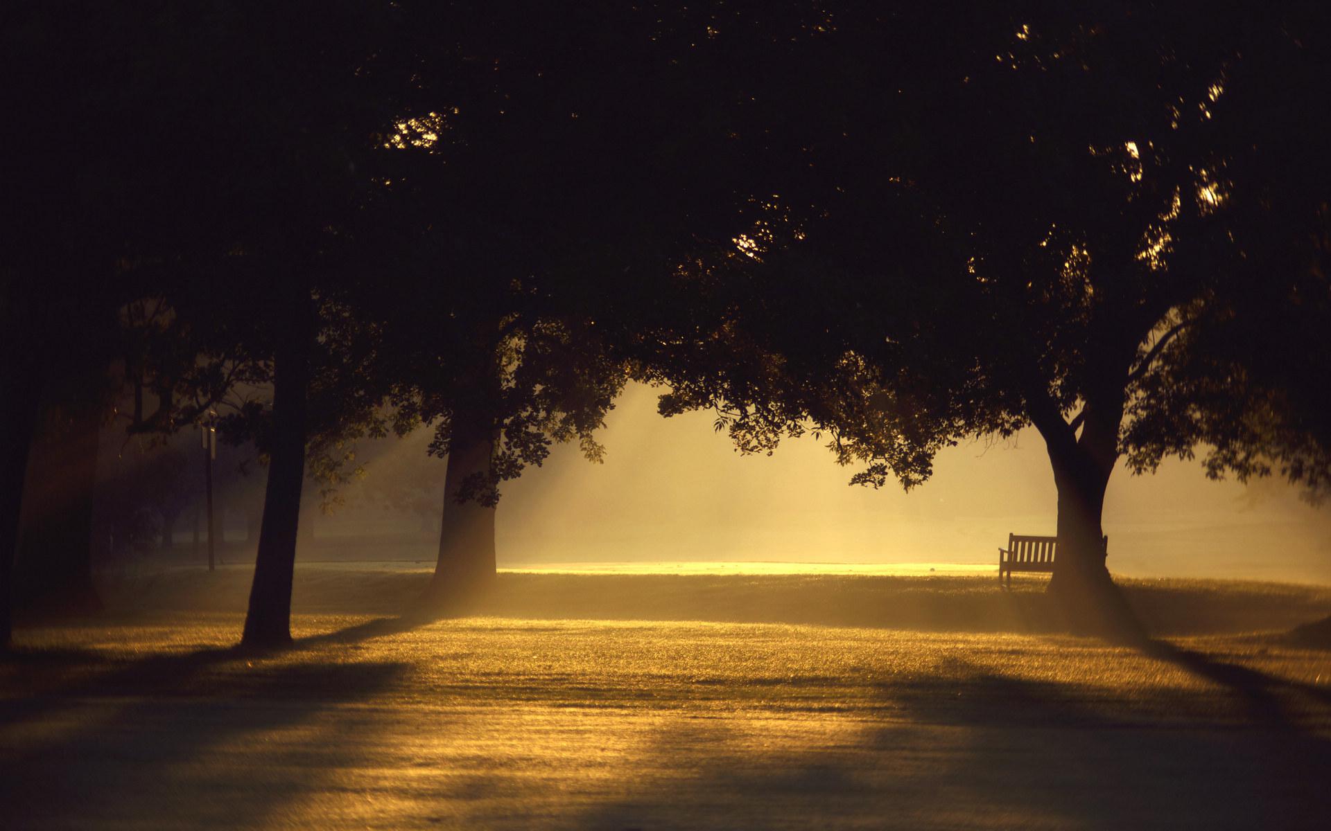 孤独的长椅唯美风景高清壁纸