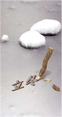 立冬冬至雪花手机壁纸下载