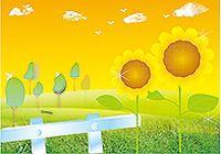 阳光向日葵矢量素材