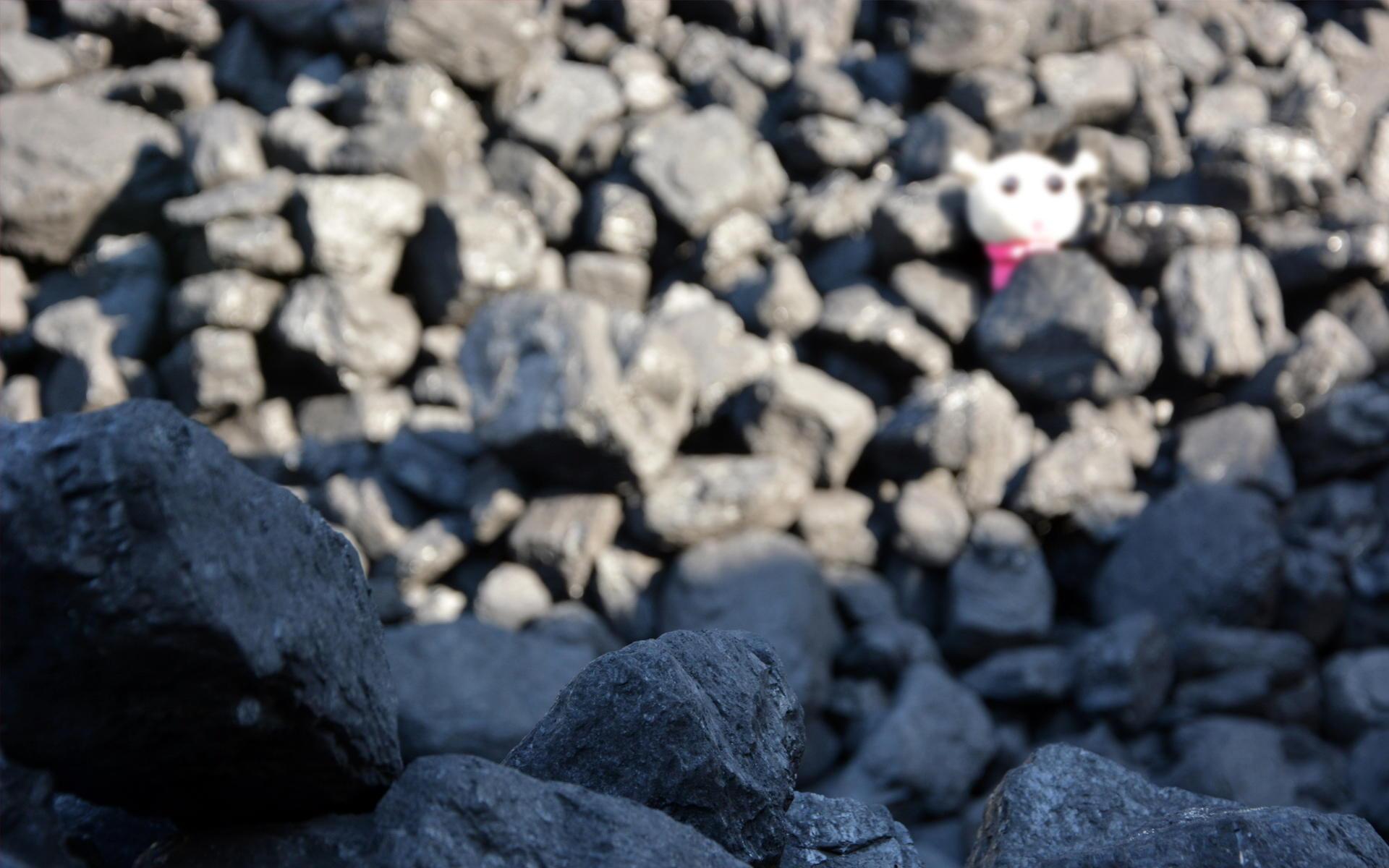 毛绒蜗弟公仔摄影高清宽屏壁纸