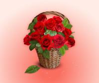 花篮中的鲜艳红色玫瑰花矢量素材下载