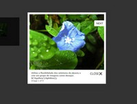 jQuery LightBox图片浏览效果