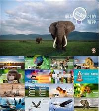 职场上应该学习动物的精神ppt作品ppt模板免费下载