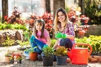 修剪盆栽的可爱女孩与美女高清图片下载