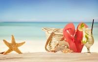 沙滩上的海星拖鞋饮料高清图片下载