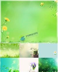 7张清新淡雅绿色植物PPT背景图片