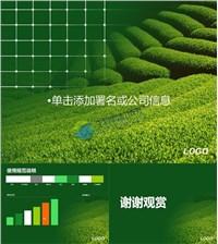 绿色茶山风光ppt模板免费下载