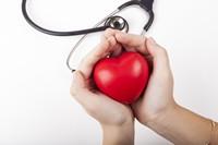 捧在手中红色爱心与听诊器高清图片下载