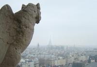 欧式雕塑俯视雄鹰城市埃菲尔铁塔高清图片下载