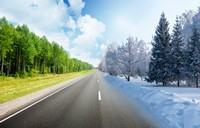 公路两旁雪景与绿色生机景观高清图片下载