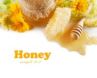 可口美味蜂蜜与花朵高清图片下载