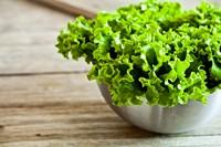 新鲜绿色蔬菜高清图片下载