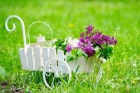 草地上迷你小推车与紫色花束高清图片下载